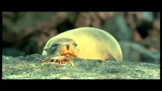 Океаны - трейлер документального фильма
