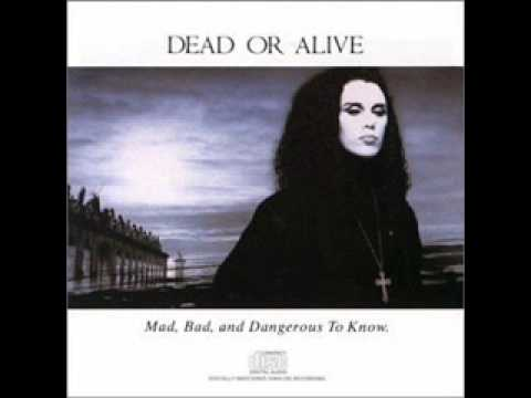 Dead Or Alive - Brand New Lover
