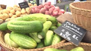 Know Your Farmer, Know Your Food and SNAP-To-It! Program at the Oregon City Farmers Market