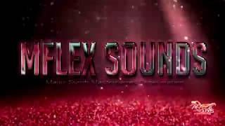 Mflex Sounds - Fly
