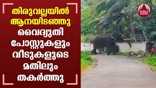 Elephant goes on a rampage, destroys houses and electric posts in Thiruvalla | Kerala