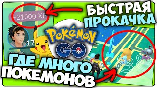 Pokemon GO [Гайд] - Быстрая Прокачка | Фарм Покемонов | +20к опыта за 10мин!