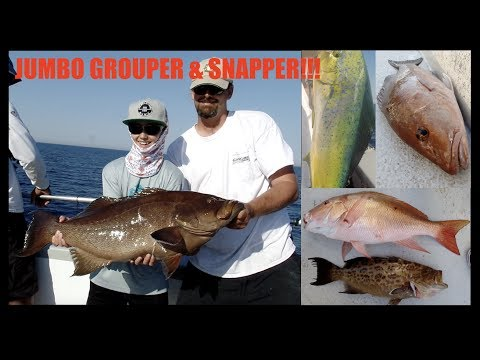 OVER-NIGHT XL SNAPPER/GROUPER BITE!!! | DEEP SEA FISHING FLORIDA