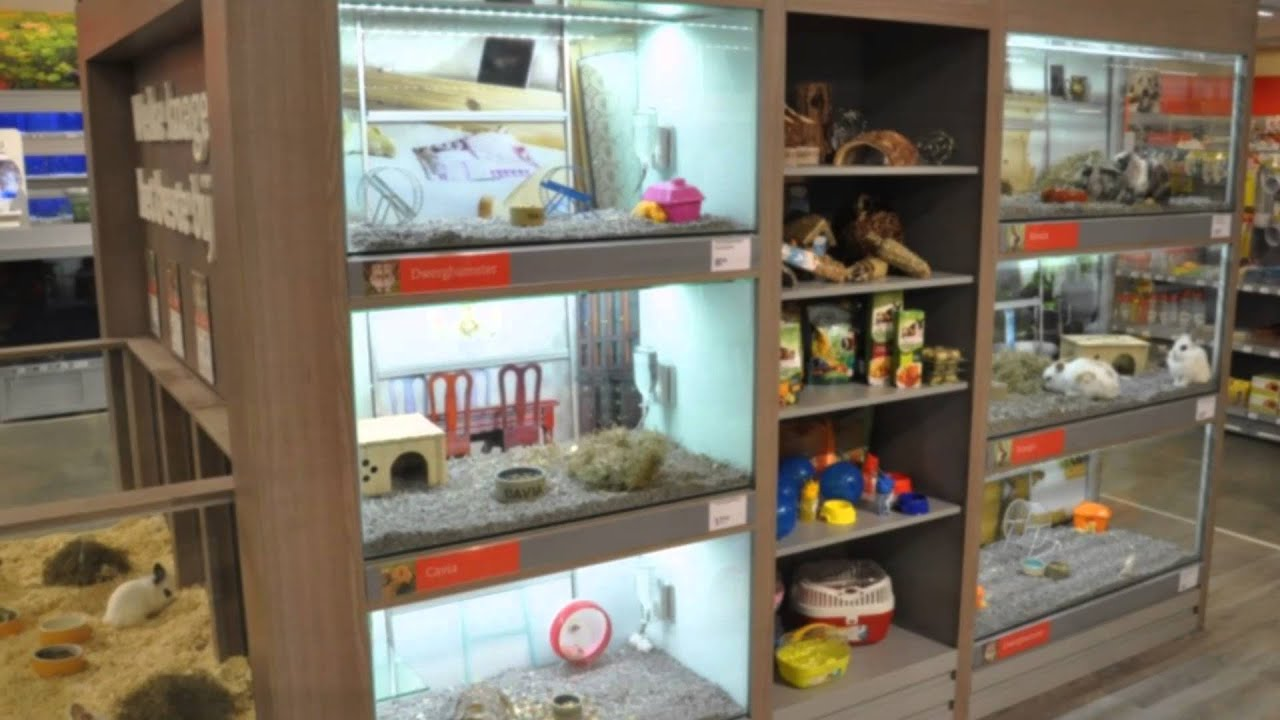 Rodent Islands Pet Amp Aquatic Shop Fitting By Aquaja