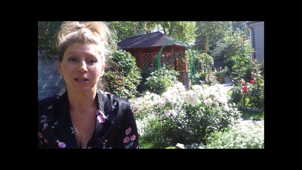 Осень в саду. - YouTube
