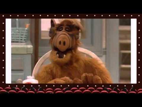 Alf best Moments
