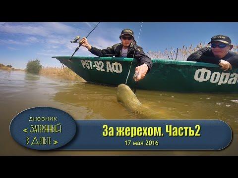 рыбалка астрахань на что рыбачить в