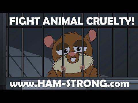 Escaping Animal Testing Lab - Hamstrong