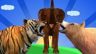 Animals Sound Video For Kids || wild Animals Nursery Rhymes || Songs For Babies