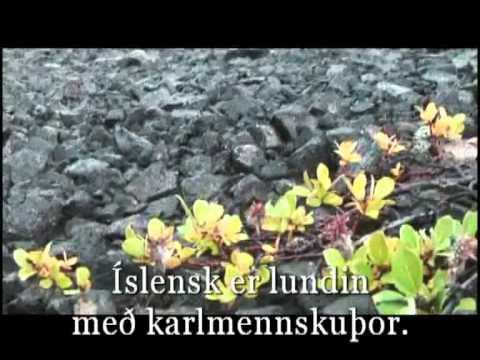Ísland er land þitt