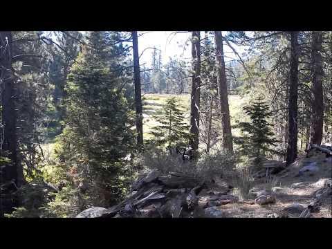 Fish Creek Meadows Hike