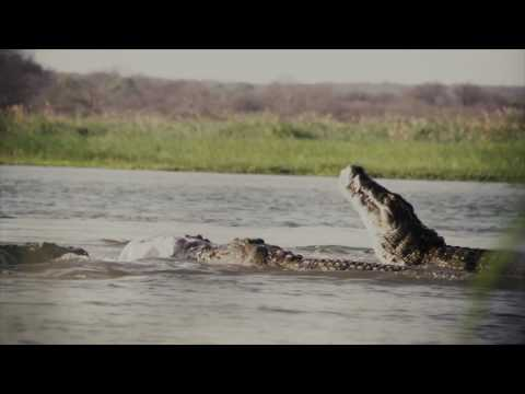 Jim Shockey's Hunting Adventures - Man-Eaters: Mozambique - Outdoor Channel