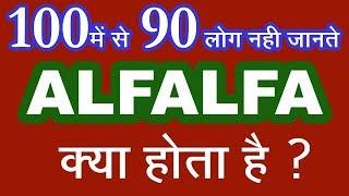 Alfalfa, रिजका गुणोका भंडार, alfalfa tonic benefits, alfalfa benefits in hindi, alfalfa tonic