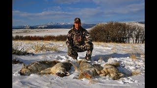 EPISODE 29: Learn to call coyotes from coyote calling Master, Clay Owens