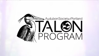 Talon Program