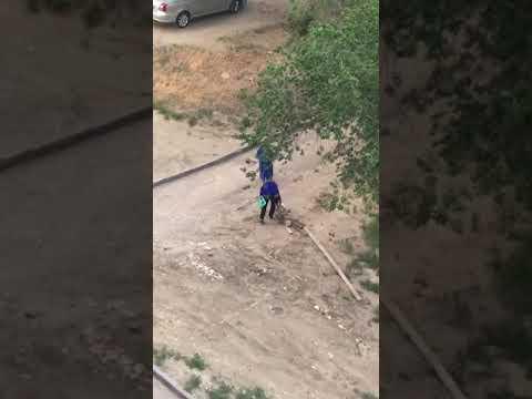 Восстание бабушек против машин в Волгограде попало на видео