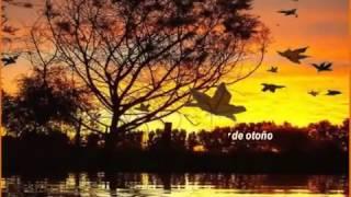 ATARDECER DE OTOÑO - Poema de Angeles Marcos - Madrid - España