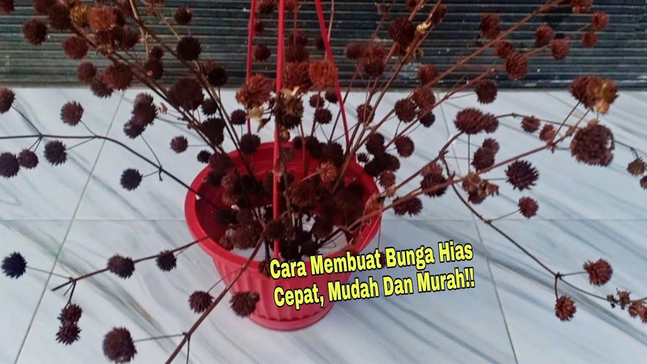 Cara Mudah Membuat Bunga Hias dengan Tumbuhan Tanaman Kering Untuk Interior Dan Eksterior Rumah