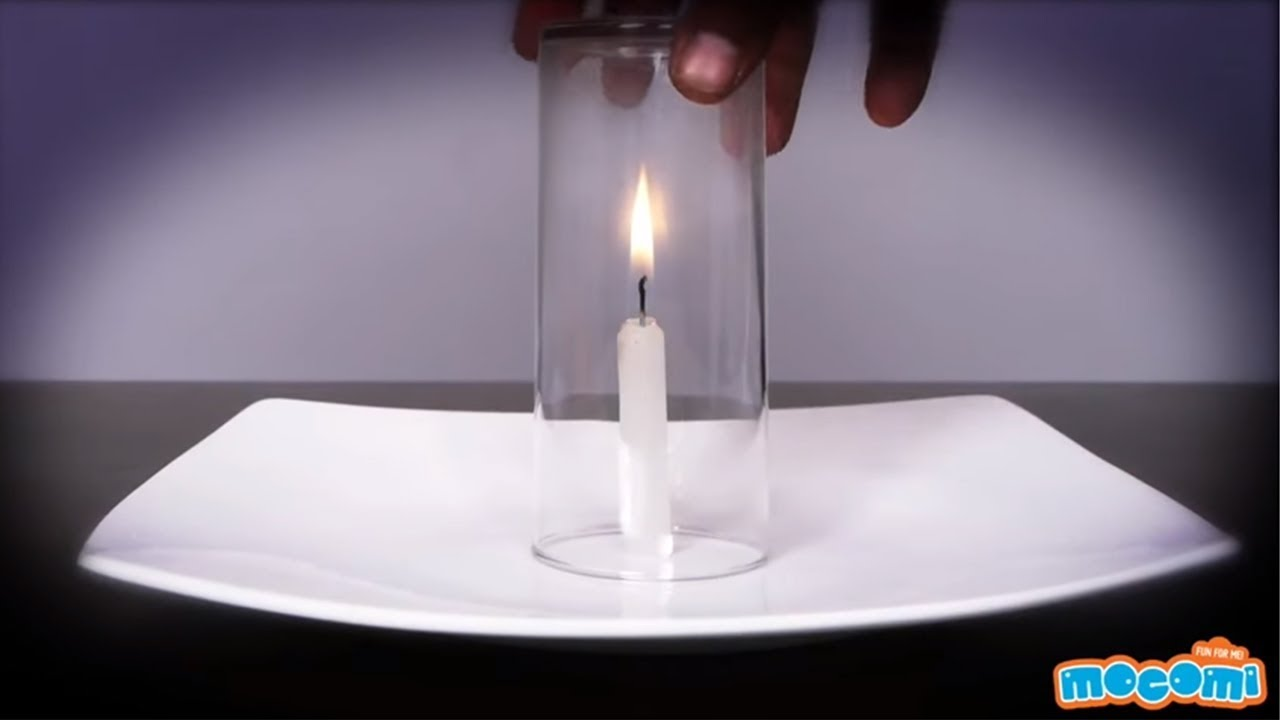 Image result for wax science experiment with plate