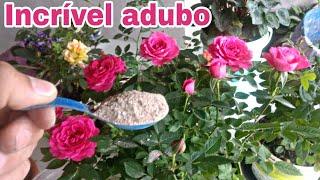 Adubo que faz sua planta ficar linda e florida