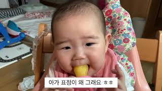 7개월 아기 자두 간식