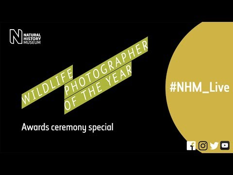 The Wildlife Photographer of the Year awards ceremony | #NHM_Live special