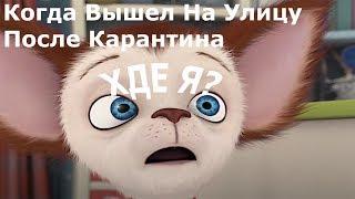 МУД Барбоскины 7