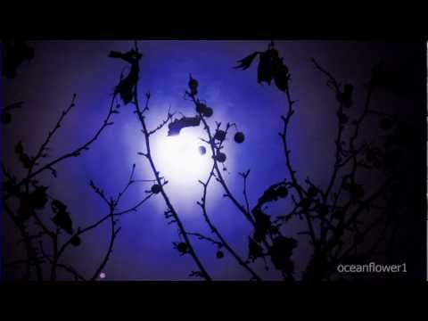 ENYA  - Shepherd Moons