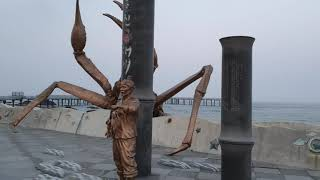 경북 울진 거일리 황금대게공원