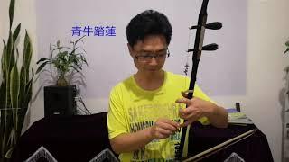 零基礎自學二胡(圩八),C調2-6絃,第一把位基礎指法介紹