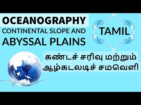 Tamil - Oceanography- Continental slope and Abyssal Plains  கண்டச் சரிவு மற்றும் ஆழ்கடலடிச் சமவெளி