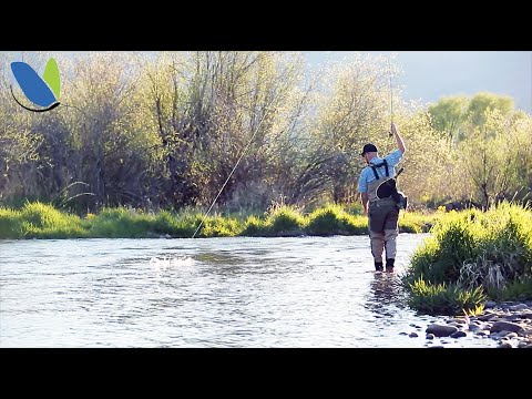 Fly Fishing: How To Fly Fish Nymphs Or Nymphing