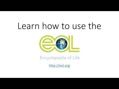 Encyclopedia of Life Tutorial for High School Students