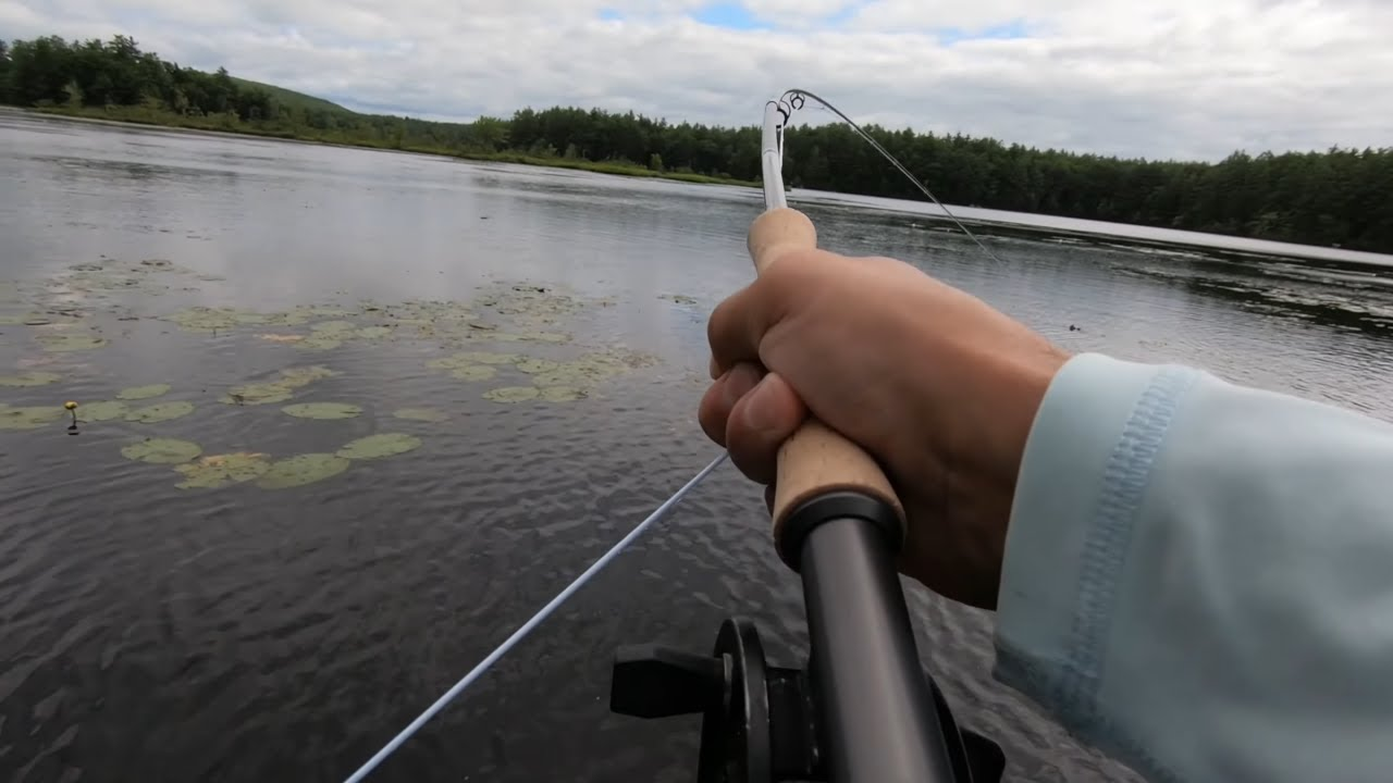 Panfish Fly Fishing with the New Orvis Recon 909