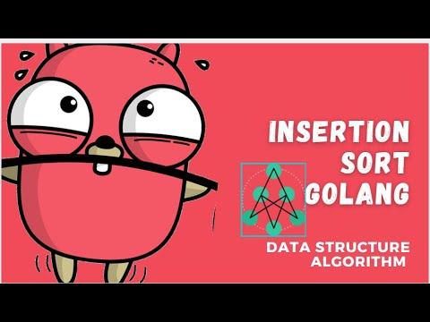 Insertion Sort Golang | Implementation Of Insertion Sorting