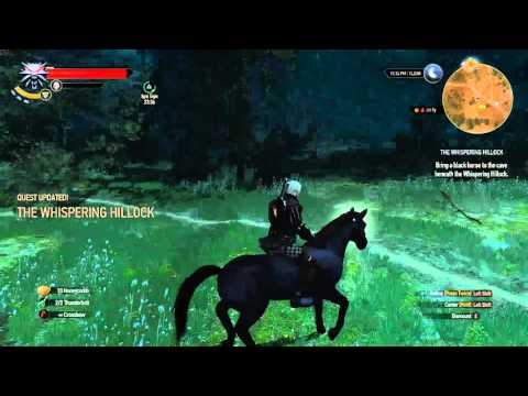 The Witcher 3: Wild Hunt  - A third option (secret) to resolve the whispering hillock quest