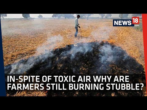 Stubble Burning Continues to Pollute Delhi Air But Can We Blame Our Farmers?
