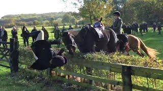 Horse Fail Compilation 🐴 | Epic Fails | Failarmy 2021
