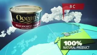 Ocean Brands Corporate Video