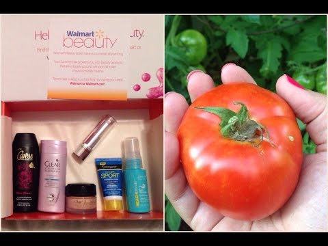 Vlog: Walmart Summer 2015 Beauty Box Review | Picking Tomatoes From My Garden!