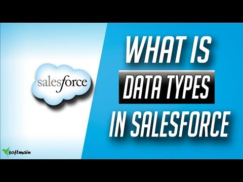 what is data type in salesforce | Salesforce Devlopment Tutorial in hindi