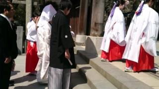 【東京】牛嶋神社の結婚式② 境内~参進のようす