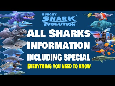 Hungry Shark Evolution All Sharks Information - Everything you need to know about all the sharks