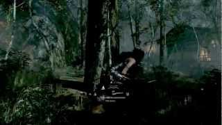 Tomb Raider - Bergwald - Gameplay [HD]