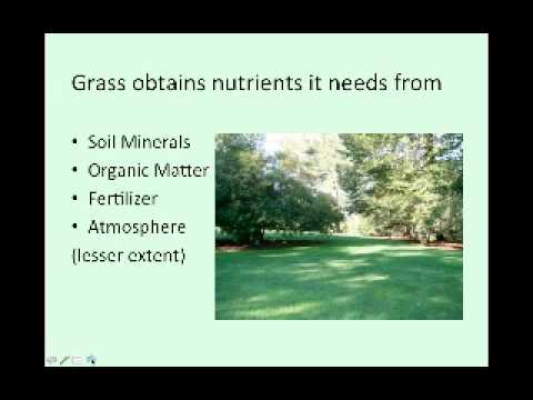 Organic Lawns   An Overview of Sustainable Turfgrass Management   Chip Osborne