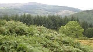 Precipice Walk, Nr. Dolgellau, Snowdonia. North West Wales.