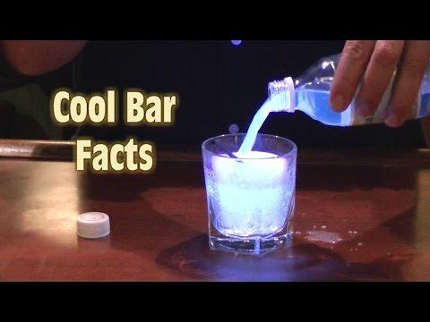 Cool Bar Facts  Top Bar Facts