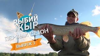 Рыбий ЖЫР- Рыбалка на Иваньковском водохранилище (Выпуск 3)