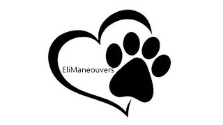 EliManeouvers - Dog Training Service - Brighton & Hove