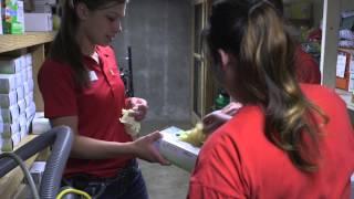 Jobs in Housing: Student Custodian Supervisor